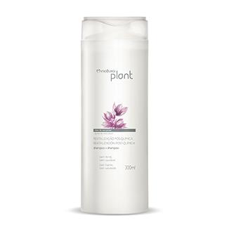 Plant - Shampoo - Revitalización post química